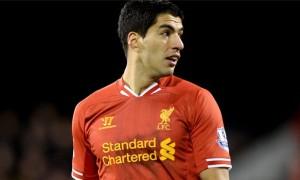 Luis Suarez Liverpool champions league