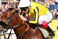 Đua ngựa: James Garfield tiếp tục đua vô địch