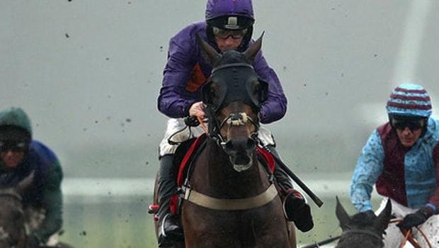 Cá cược đua ngựa: Ian Williams cân nhắc ngựa đua Gas Line Boy