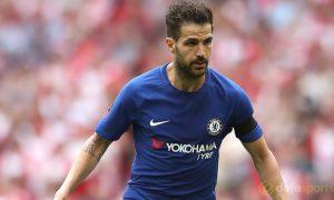 Cá cược bóng đá Anh: Cesc Fabregas quyết tâm cùng Chelsea vô địch FA cup