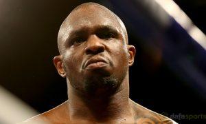 Cá cược Boxing: Dillian Whyte thách đấu Kubrat Pulev