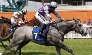 Tỉ lệ cược đua ngựa: Tỉ lệ cược ngựa đua Burke Havana tại giải Battaash