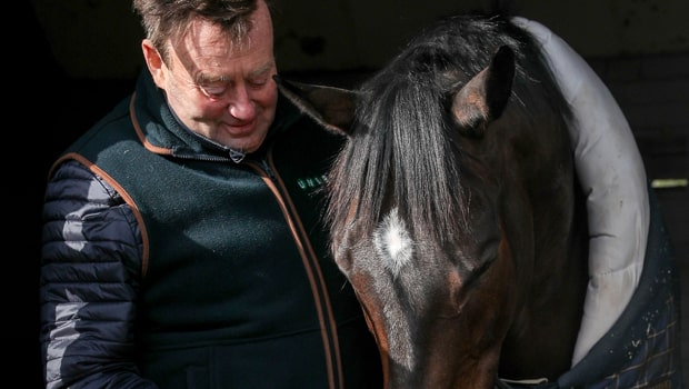 Cá cược đua ngựa: Nicky Henderson ca ngợi ngựa đua Altior