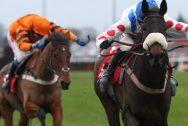 Cá cược đua ngựa Dafabet: Paul Nicholls tại giải Gold Cup
