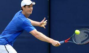 Cá cược tennis không có bất ngờ từ Andy Murray