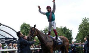 John Gosden khen ngợi ngựa đua Enable