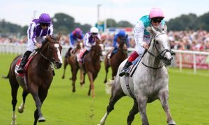 Cá cược đua ngựa đặt cược vào St Leger của Logician